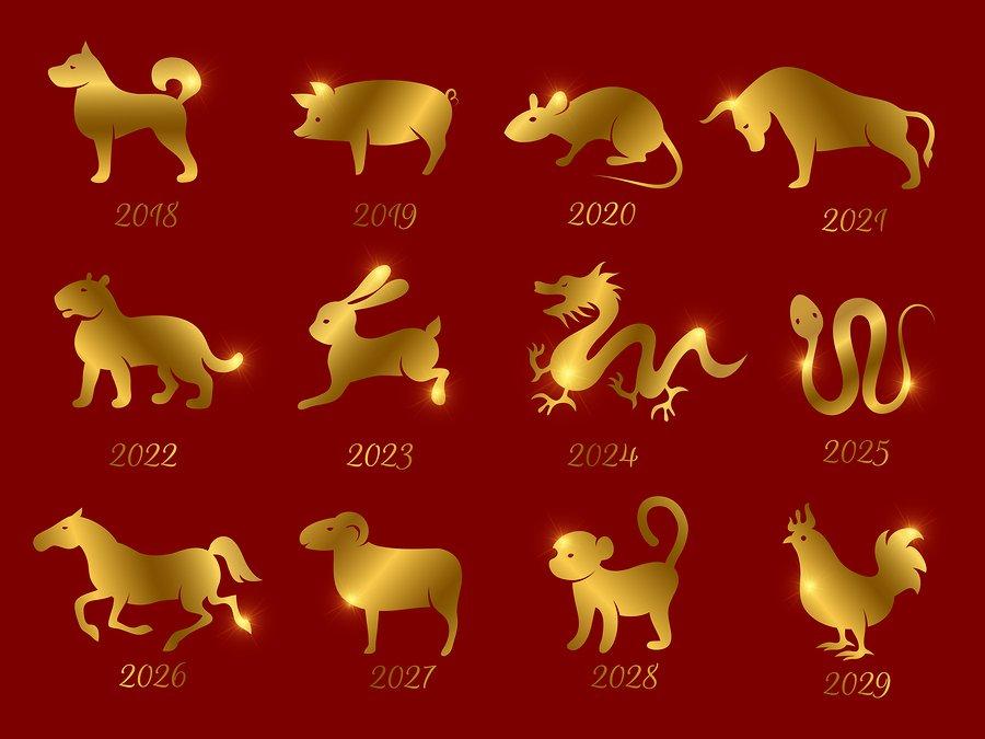 Water rat horoscope forecast